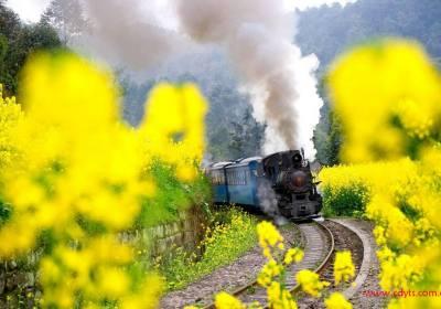 成都到嘉阳小火车、看油菜花VIP汽车一日游、嘉阳旅游多少钱、嘉阳旅游线路报价