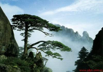 成都到黄山、千岛湖休闲双飞四日游、去黄山旅游多少钱、黄山旅游线路报价