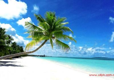 成都到马尔代夫最便宜的岛屿有哪些