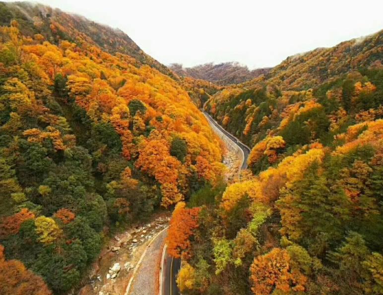 成都到光雾山三日游、和米仓山是什么关系