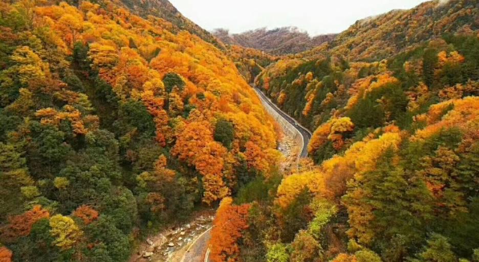 【红韵山水】成都到光雾山、明月峡、雪溪洞、阆中古城、八尔湖三日游