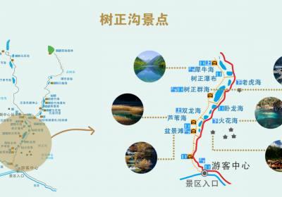 成都到九寨沟旅游人数每天8000人