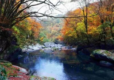 去光雾山看红叶的最佳时间、光雾山什么时候最美、光雾山最佳旅游时间