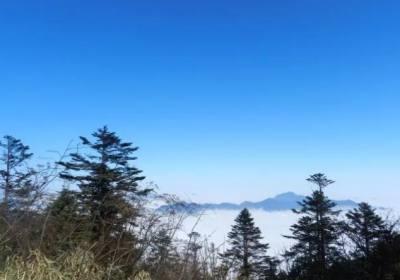 西岭雪山一日游多少钱、西岭雪山报团多少钱、成都到西岭雪山多少钱