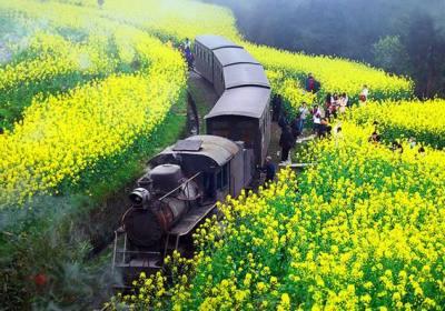 成都到嘉阳小火车怎么坐车、成都到嘉阳小火车怎么去