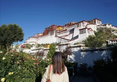 去西藏坐飞机好还是火车好、去西藏是跟团好还是自由行好