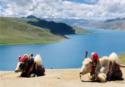 跟团去西藏旅游大概需要多少钱、报团去西藏大概多少钱、坐火车去西藏旅游大概要多少钱